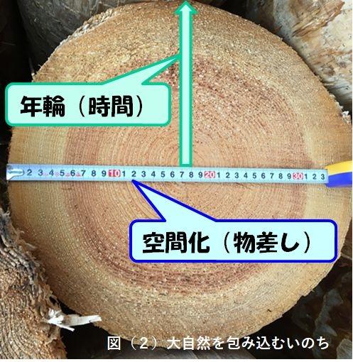 Photo_20200201135501